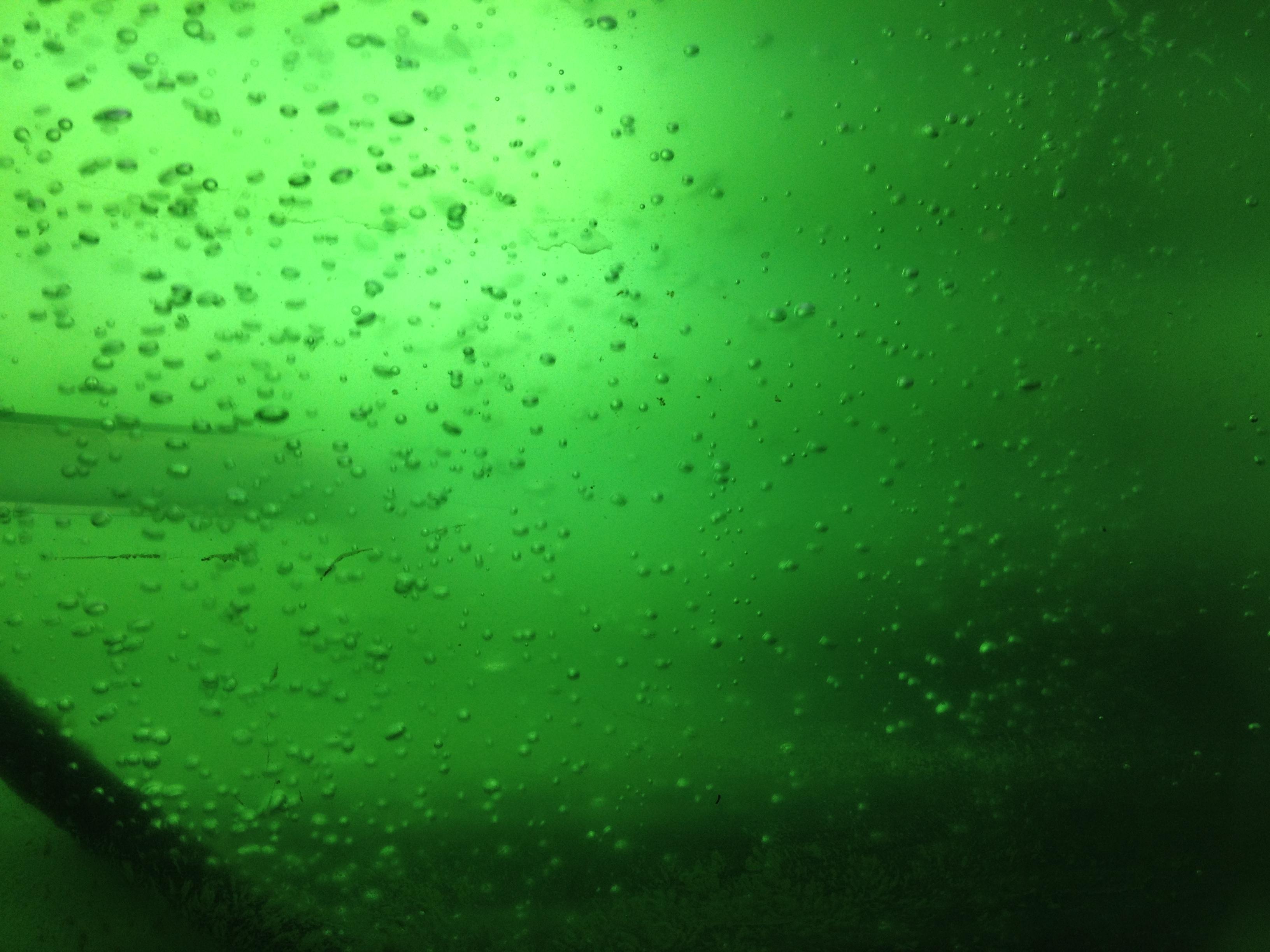algae lab Algae raceway paves path from lab to real-world applications.