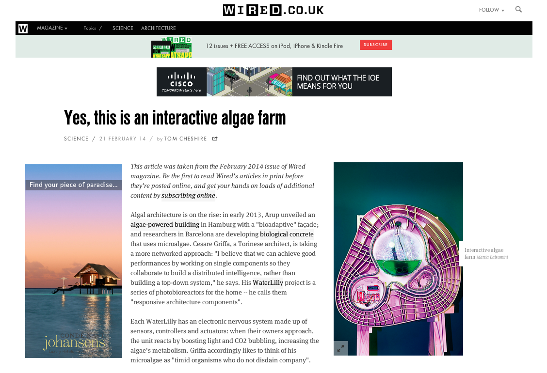 WaterLilly on Wired uk | cesare griffa architetto