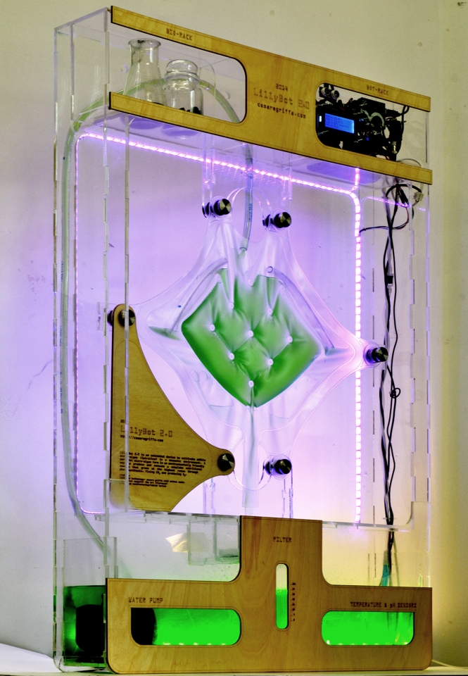 LillyBot 2.0 an evolution of a domestic algae farm